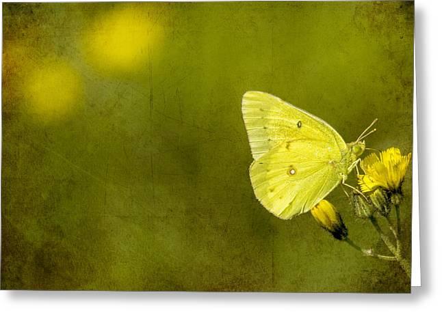 Tiny Green Dancer Greeting Card by Bill Tiepelman