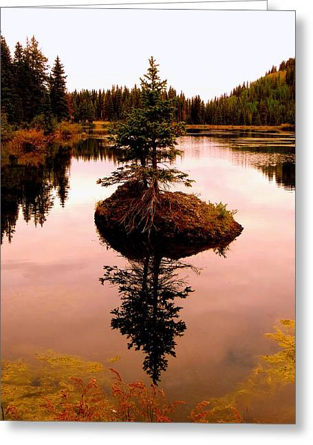 Greeting Card featuring the photograph Tiny Island by Karen Shackles
