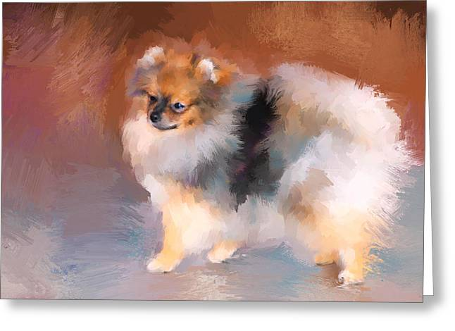 Tiny Pomeranian Greeting Card