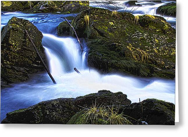 Greeting Card featuring the photograph Tiny Water Fall by Timothy Latta