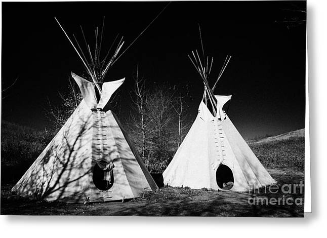 tipi tents at Wanuskewin heritage park saskatoon Saskatchewan Canada Greeting Card by Joe Fox