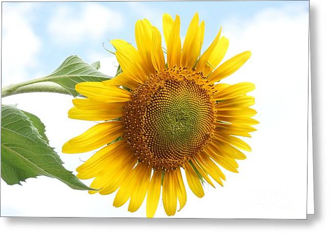 Tipping Over Greeting Card by Kerri Mortenson
