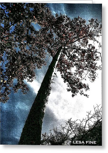 Tippy Top Tree II Art Greeting Card