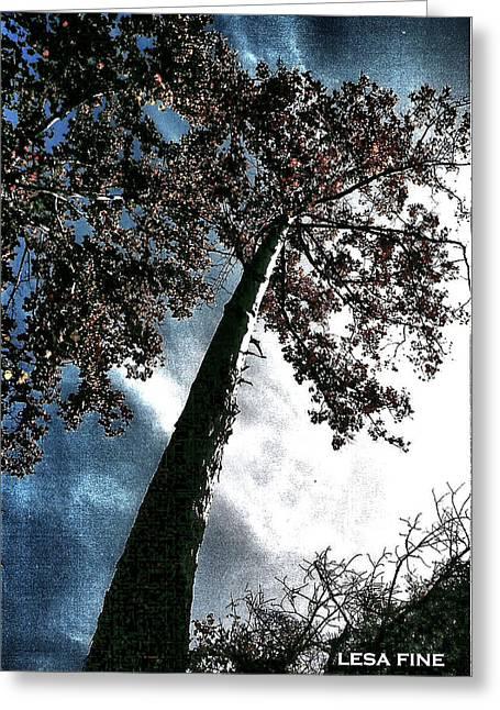 Tippy Top Tree II Art Greeting Card by Lesa Fine