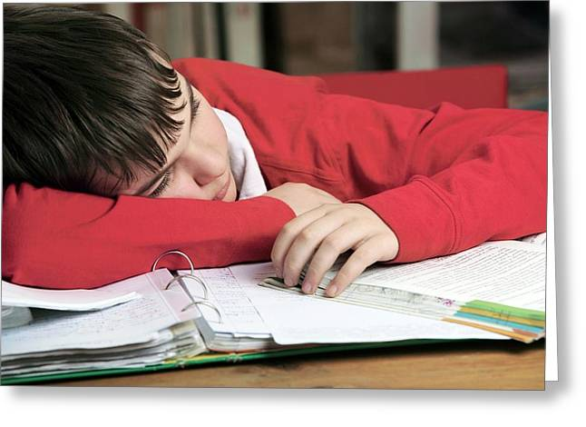 Tired Boy Asleep On His Homework Greeting Card