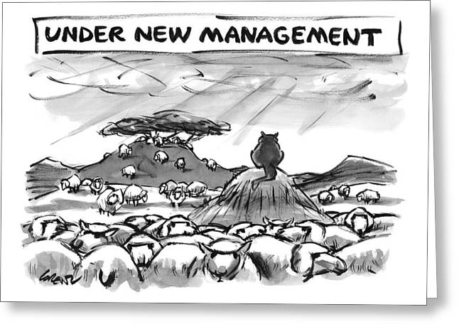 Title: Under New Management.  A Cat Overlooks Greeting Card