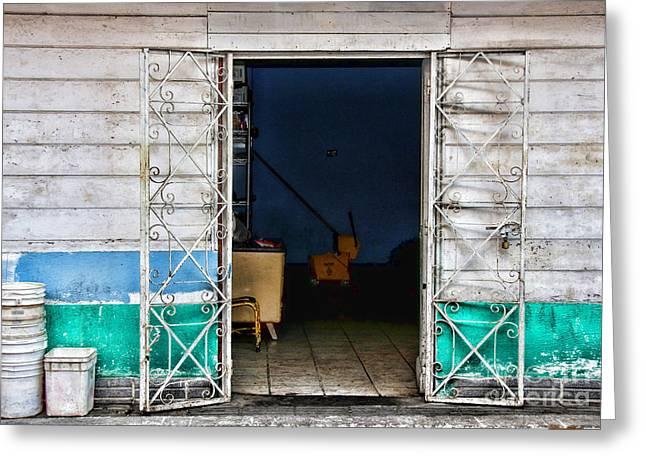 Tj The Back Door By Diana Sainz Greeting Card by Diana Sainz
