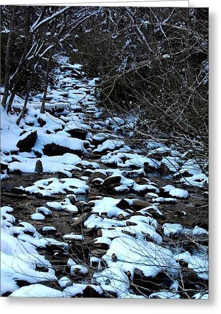 Tn Creek Greeting Card by Joyce Brooks