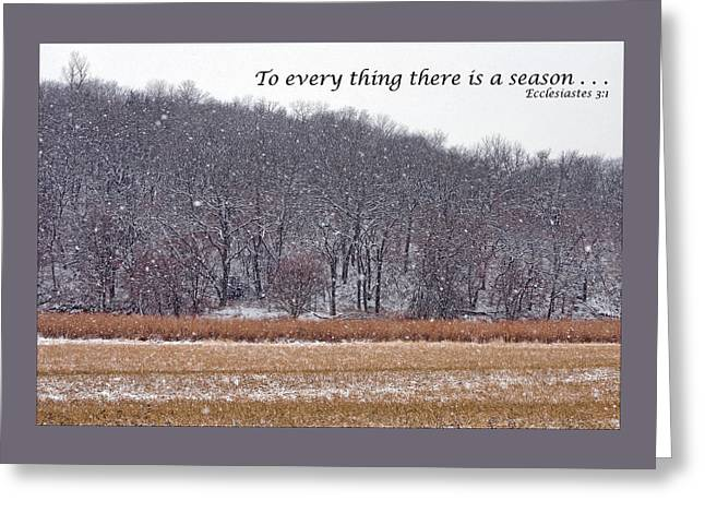 To Every Thing There Is A Season Greeting Card by Nikolyn McDonald