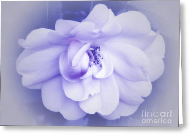 To My Sweetheart Greeting Card by Terry Wallace