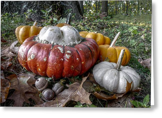 To Swell The Gourd Greeting Card