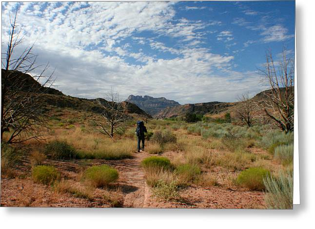 Greeting Card featuring the photograph To The Desert by Jon Emery