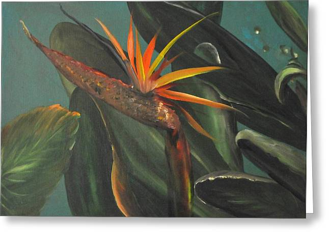 To The Tropics Greeting Card