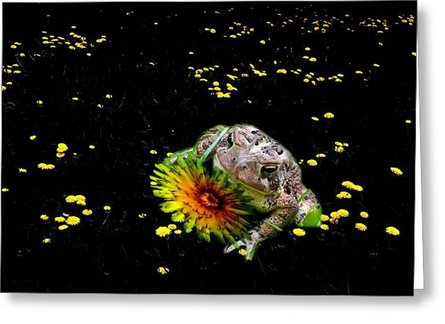 Toad In A Lions Den Greeting Card