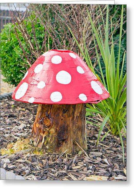 Toadstool Greeting Card by Tom Gowanlock