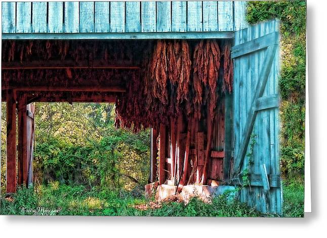 Tobacco Barn - Featured In Old Building And Ruins Group Greeting Card