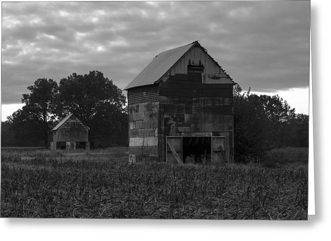 Tobacco Barns Greeting Card