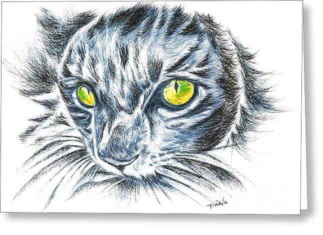 Toby Green Eyed Cat Greeting Card