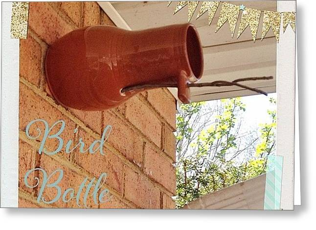 Today We Put Up Our Bird Bottle. We Got Greeting Card