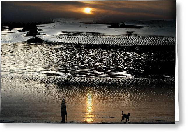Tofinoscape Dusk Greeting Card by Lyn  Perry