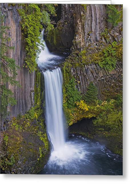 Toketee Falls Greeting Card by Loree Johnson