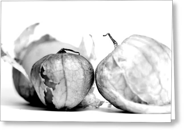 Tomatillo Greeting Card by Susie DeZarn