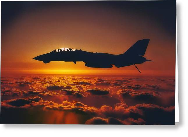 Tomcat Sunrise Greeting Card by Peter Chilelli