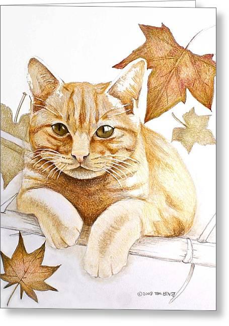 Tomcat Greeting Card
