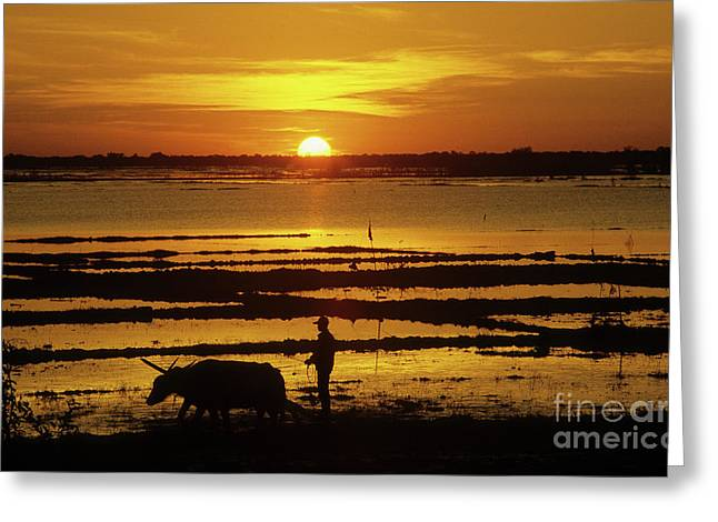 Tonle Sap Sunrise 01 Greeting Card by Rick Piper Photography