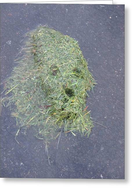 Greeting Card featuring the photograph Too Much Grass Man by Marie Neder