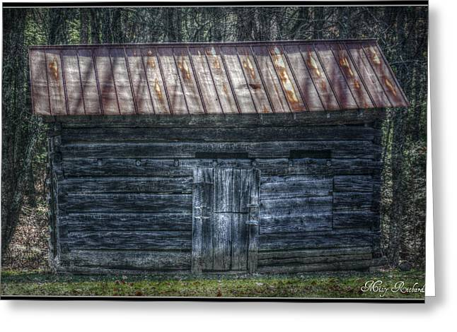 Tool Shed Greeting Card by Missy Richards