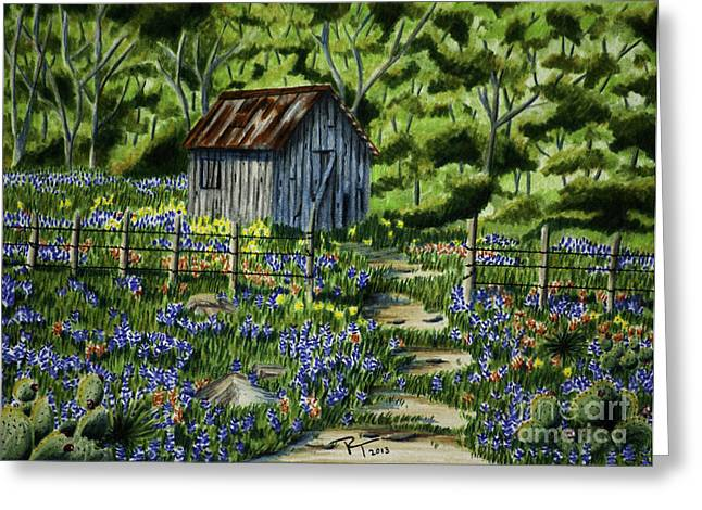 Tool Shed Greeting Card by Robert Thornton