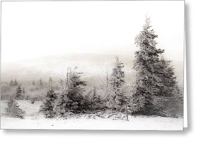 Top Of Canaan In Winter Greeting Card