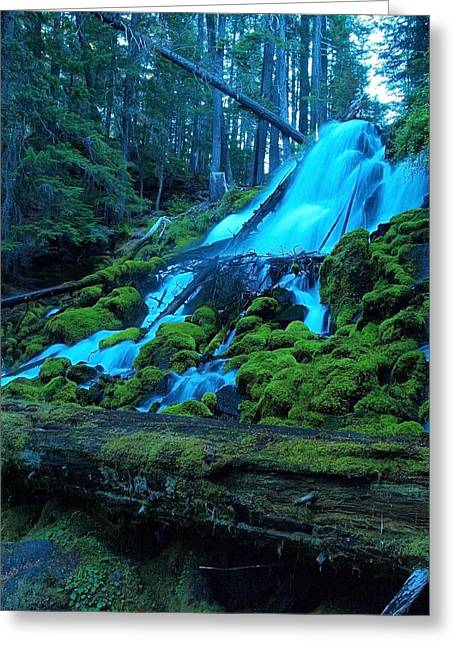 Top Part Of Clearwater Falls Greeting Card by Teri Schuster