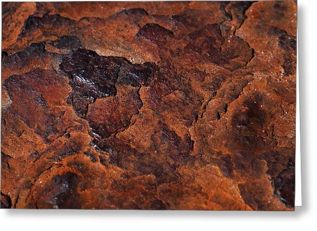 Topography Of Rust Greeting Card by Rona Black
