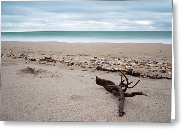 Topsail Island Driftwood Greeting Card