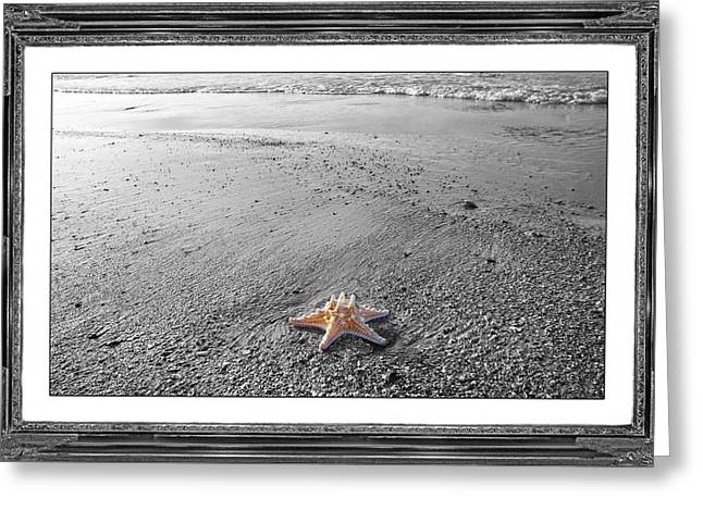 Topsail Island The Lone Star Greeting Card