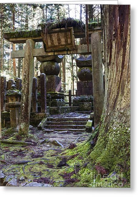 Torii Gate In Koyasan Graveyard Greeting Card
