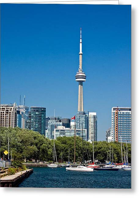 Toronto Harbour Greeting Card by Steve Harrington