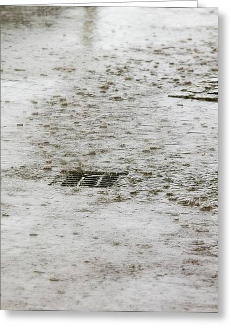 Torrential Rain Greeting Card by Ashley Cooper