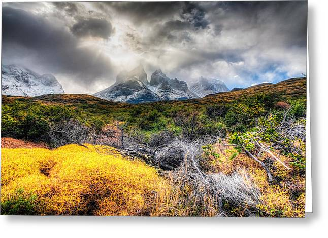 Torres Del Paine Peaks Greeting Card by Roman St