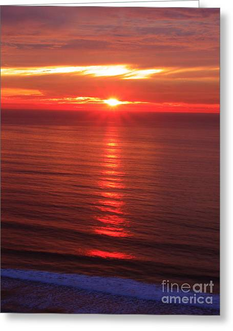 Torrey Pines Starburst Greeting Card