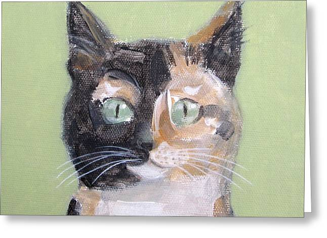 Tortie Cat Greeting Card