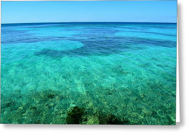 Tortugan Horizon Greeting Card by Michelle Wiltz