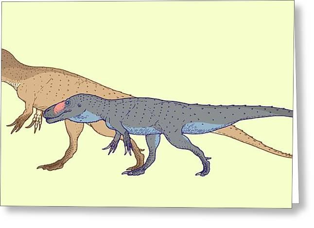 Torvosaurus Size Comparison Greeting Card by Nemo Ramjet
