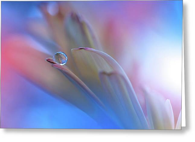 Touch Me Softly... Greeting Card