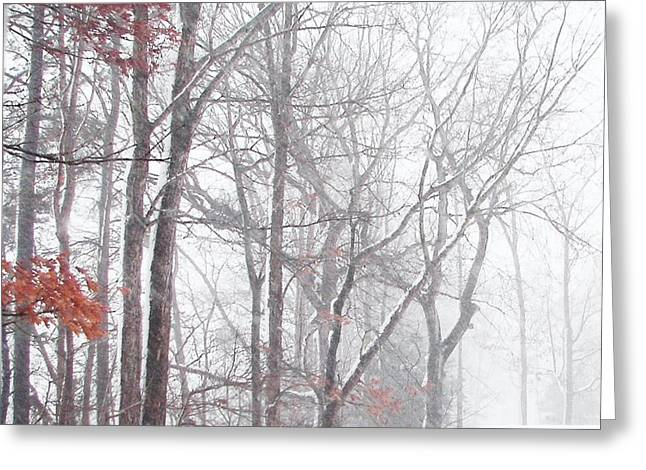 Touch Of Fall In Winter Fog Greeting Card