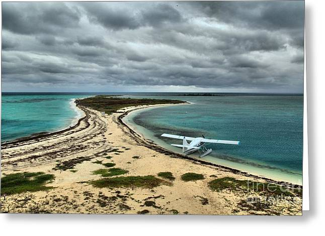 Touchdown At Tortugas Greeting Card by Adam Jewell