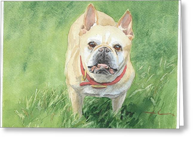 Tough Little Dog Watercolor Portrait Greeting Card by Mike Theuer