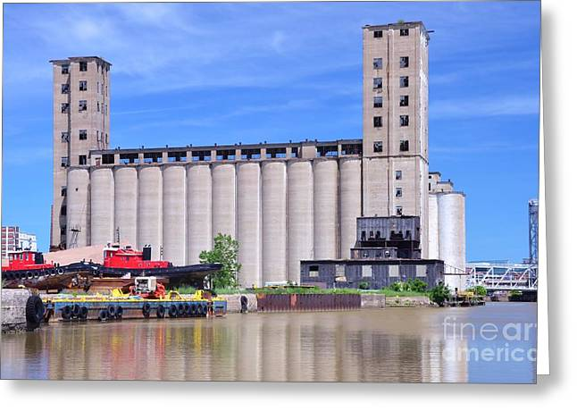 Tour Down Buffalo River Greeting Card by Kathleen Struckle